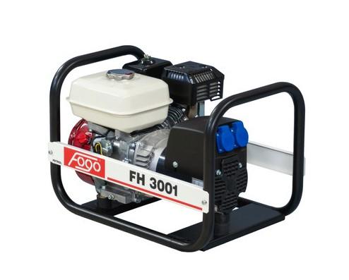 fh3001
